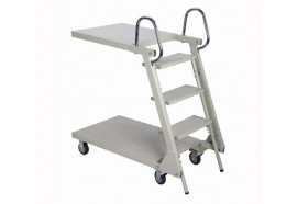 Ladder Cart